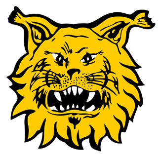 Tampereen Ilves Naiset